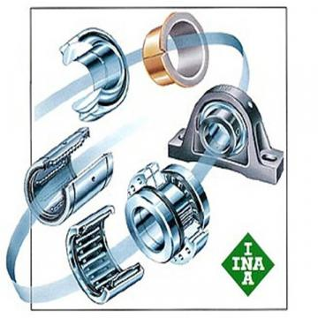 INA  SL04-5038NR 11 best solutions Bearing