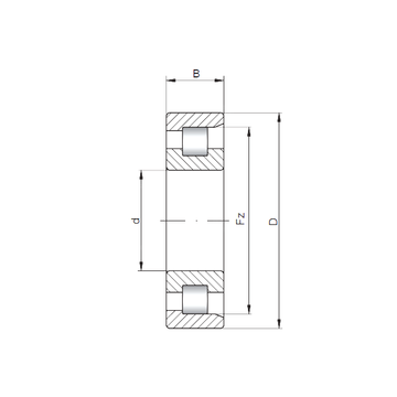 NF317 ISO Cylindrical Roller Bearings
