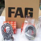 10700-RIT FAG  2018 latest Oil and Gas Equipment Bearings