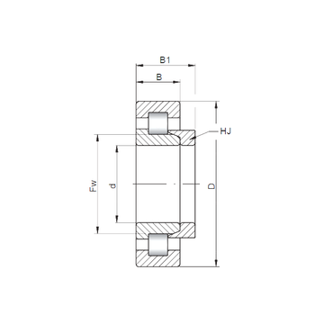NH2336 CX Cylindrical Roller Bearings