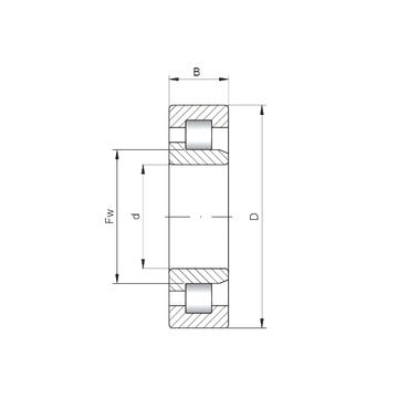 NJ3036 CX Cylindrical Roller Bearings